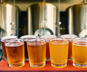 image of 8 large beers in a micro brewery
